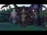 LOL SHUFF MONTAGE : Birds crazy with League of Legends  # Funny League Of Legends