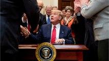Trump Will Sign Order Curbing Environmental Regulations
