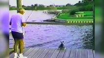 Belle compilation de chiens qui tombent à l'eau.. FAIL de chien