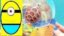 Toys review toys unboxing. Robo turtle. Turtle robot rofofish unboxing toys egg surprise tv