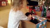 Cute Babies Playing with Dogs - Lindos bebés jugando con perros