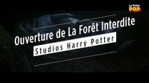 La Forêt Interdite révèle tous ses secrets aux Studios Harry Potter