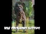 COUP DE GUEULE !!!