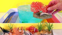 DIY SHARK Toys Slime Aquarium Fish Tank - Toy Sharks, Sea Animals, Toys and Slime _ Craft Videos-FGWk-0rOWSE
