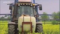Faut-il réinventer les pratiques agricoles ?