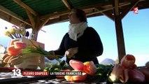Fleurs coupées : une exploitation bio en Isère