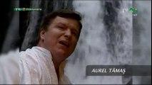 Aurel Tamas - Viata trecatoare - Arhiva