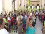 Domingo de ramos la llegada del mesias