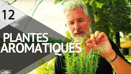 Cultiver des plantes aromatiques  - ÉPISODE 12