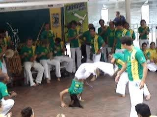 Internation Capoeira festival Sydney