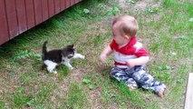 Quoi de plus mignon que des bébés et des chatons... Compilation