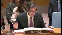 """Attaque chimique en Syrie : """"Le monde nous regarde"""", déclare la France à l'ONU"""