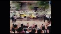 TIFF (2014) - Red Rose Trailer - Sepideh Farsi Romantic Drama HD    BestDramaTv Net