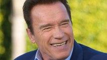 Arnold Schwarzenegger Would Play Another Batman Villain