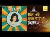 楊小萍 Yang Xiao Ping- 異鄉人 Yi Xiang Ren(Original Music Audio)