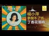 楊小萍 Yang Xiao Ping- 丁香花落時 Ding Xiang Hua Luo Shi (Original Music Audio)