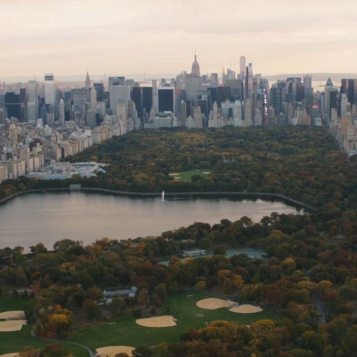 New York makes big step towards affordable education