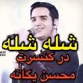 ماجرای عروس جنجالی به کنسرت محسن یگانه هم سرایت کرد.