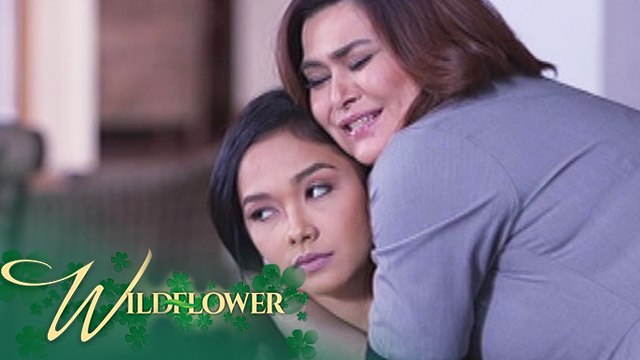 Wildflower: Ivy continues to gain Emilia's trust | EP 37