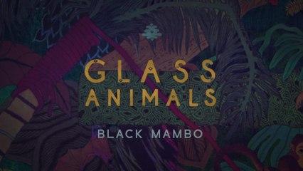 Glass Animals - Black Mambo