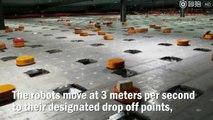 Milliers de robots intelligents : tri & livraison des colis !