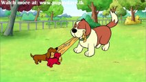 Clifford's Puppy Days - s02e01 Puppy Dog Power _ Extra! Extra!