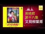 黄晓君 Wong Shiau Chuen - 又見柳葉青 You Jian Liu Ye Qing (Original Music Audio)