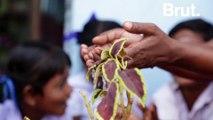L'aide publique au développement, une promesse encore loin d'être tenue