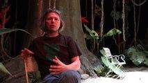 Dans les coulisses de la jungle - Odéon-Théâtre de l'Europe