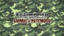 【猫動画】ダンボールと猫#2 / CORRUGATED CARTON & CATS【CAT VIDEO】