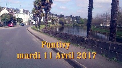 PONTIVY - Les palmiers au bord du Blavet - mardi 11 Avril 2017