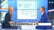 """Nicolas Dupont-Aignan dénonce """"une caste politique qui n'écoute plus les Français"""" - Politique"""