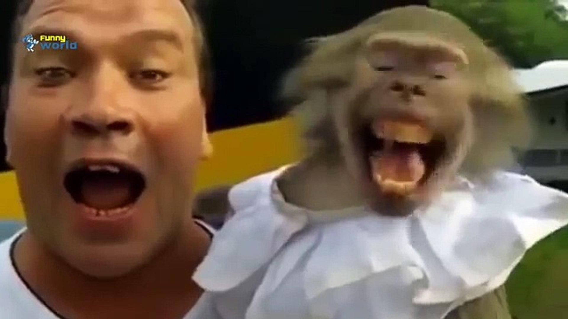 Забавни Клипове 2015 - Смешни Животни Правят Смешно Звучи Компилация