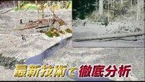 幻解!超常ファイル~ 森の獣人・ビッグフットを追え1~ #NHK #超常現象 #栗山千明