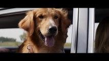 Mes vies de chien : la bande-annonce du film