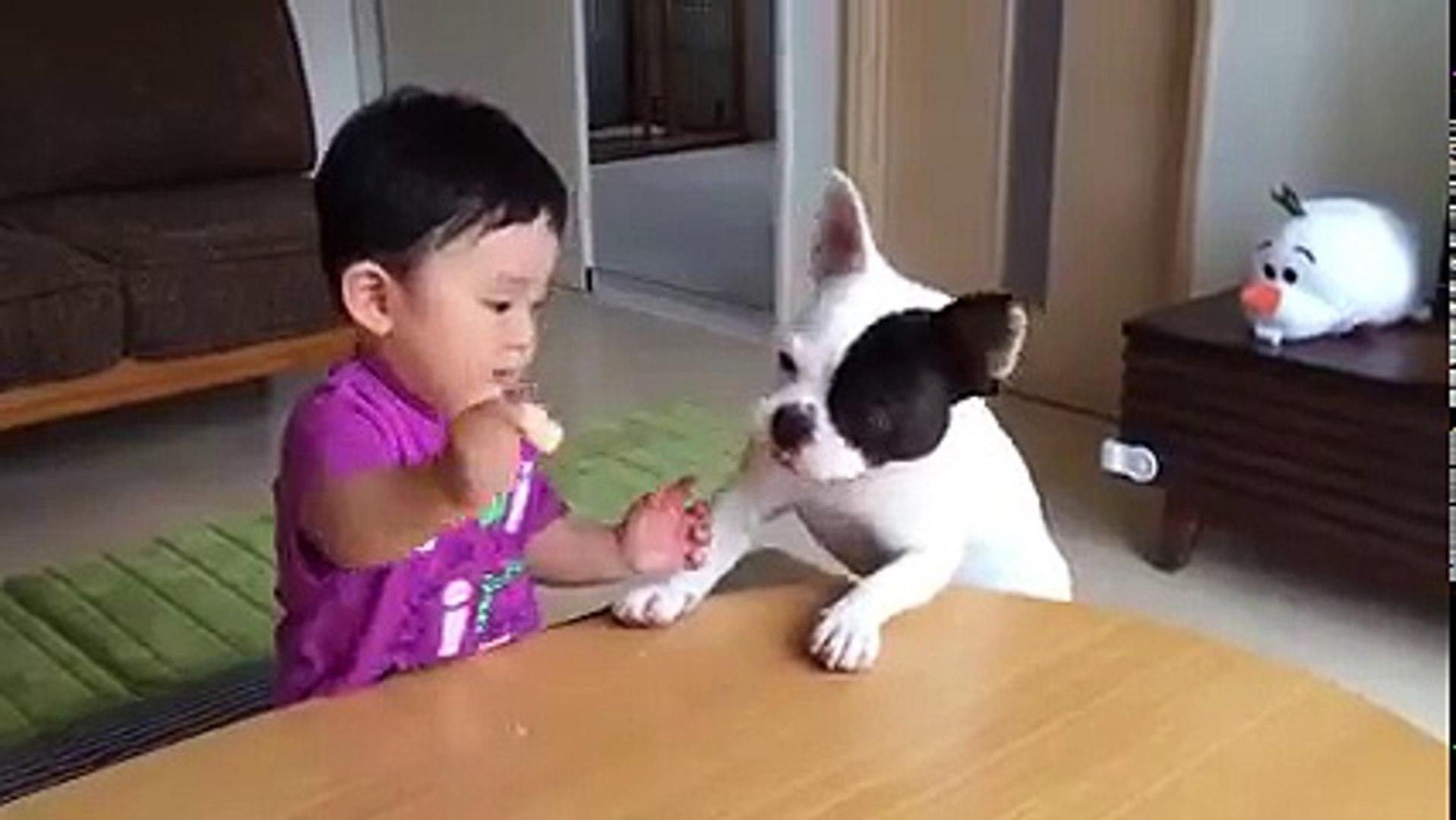 cute funny videos