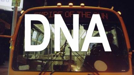 Empire Of The Sun - DNA