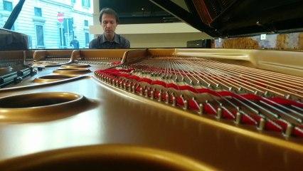 Maurizio Baglini - Schumann: Scherzo (Piano Sonata No.2 in G minor, Op.22)