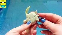 Toys review toys unboxing. Robo turtle. Tasdasdurtle robot rofofish unboxing toys egg su