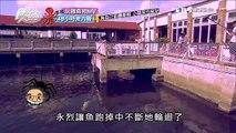 【澎湖】海龍海釣 魚自己釣最新鮮 小朋友也能玩 食尚玩家 20160914