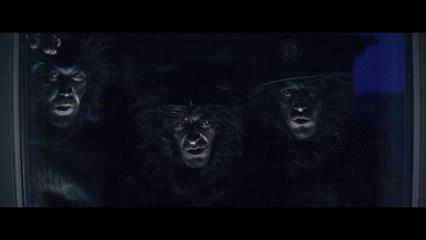 Labyrint - Apor i djungeln