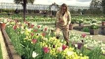 Kensington Palace opens memorial garden for Princess Diana