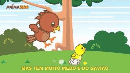 Animazoo - Pintinho Amarelinho