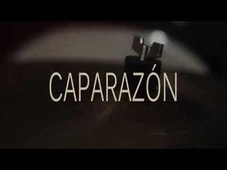 Iván Salo | Caparazón