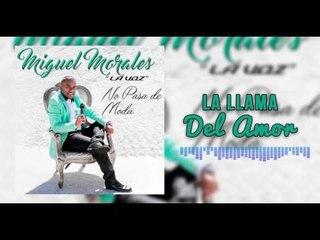 La Llama Del Amor - Miguel Morales I Mano De Obra ®