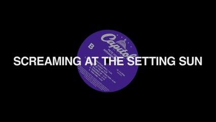 Pete Yorn - Screaming At The Setting Sun