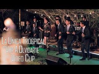 VOY A OLVIDARTE - LA UNICA TROPICAL (VIDEO CLIP 2016)