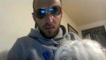 meu Cão branco