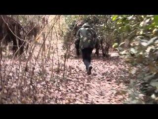 Back - Caballero Templario (Leon se pierde en el Bosque)