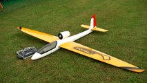 RC MODEL GLIDER 'STINGRAY' EDF WITH TURBINE SOUND _ Euroflugtag Rheidt 2016-x